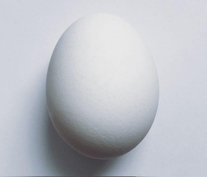 Es gibt Formen, die man nicht verbessern kann. Zum Beispiel das Ei, dessen Faszination sich als roter Faden durch die Kultur- und Designgeschichte zieht.