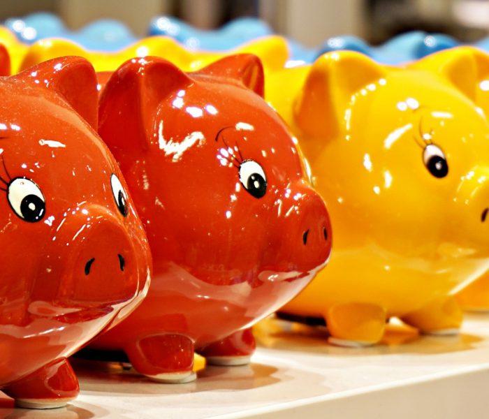 In Zeiten von Null- und Negativzinsen werden Sparschweine zunehmend attraktiver. Für eine wirklich ertragreiche Geldanlage braucht es aber Grundkenntnisse.
